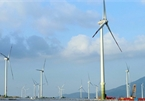 Offshore wind likely contribute 12% to Vietnam's power by 2035: World Bank