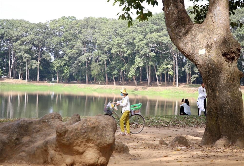 Một địa điểm nổi tiếng ở TP.Trà Vinh là ao Bà Om, nơi này có rất nhiều cây cổ thụ rợp bóng mát. Ảnh: H.T.