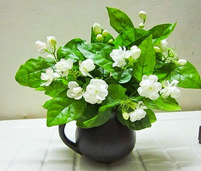 Ngoài tác dụng tăng vẻ đẹp trong phòng, giúp bạn có tinh thần thoải mái, mùi hương của hoa sẽ lấn át và tỏa khắp căn phòng ngủ. Ảnh: ST