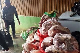 Phát hiện kho lạnh có 800kg thịt lợn bốc mùi