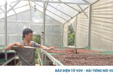 """Gã Đường """"gàn"""" và khát vọng làm nông nghiệp sinh thái"""