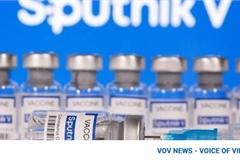 Sputnik V vaccine manufactured by Vietnam meets quality standards