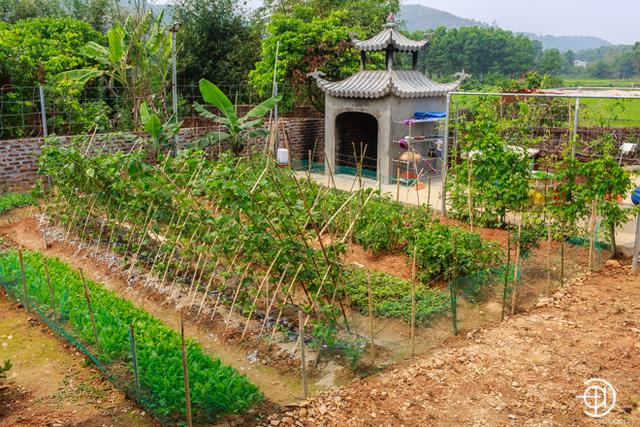 Bất động sản - Khám phá cơ ngơi rộng gần 2000m2 có điện thờ Mẫu của ca sĩ Việt Hoàn (Hình 15).