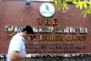 Vietnam Rubber Group fears nCoV may erode demand from biggest buyer China