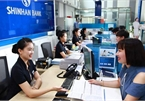 Foreign banks start consumer finance boost in Vietnam's market