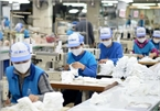 Mounting difficulties may lead half of Vietnam textile-garment firms to bankruptcy