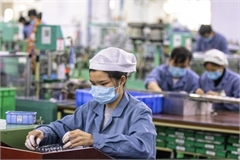 Vietnam economy accelerates to get back to normal state