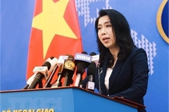 Vietnam urges relevant countries to strictly observe UNCLOS