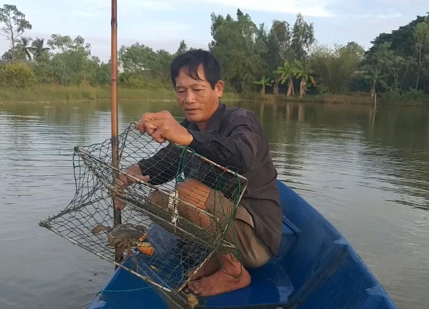 Ngày Tết, cua biển ngon nhất miền Tây giá 1 triệu đồng/kg - Ảnh 2.