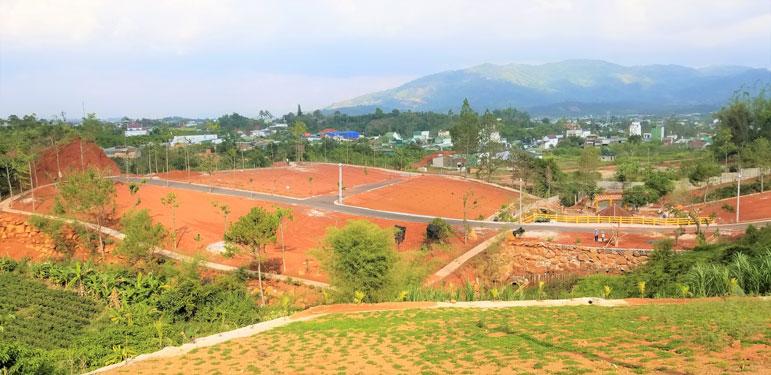 Bát nháo mua bán đất ở Tây Nguyên - Ảnh 2.