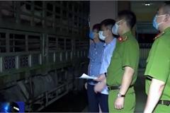Thanh Hóa phát hiện 240 con heo bị dịch đang trên đường chuyển vào Huế tiêu thụ