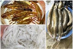 Ba đặc sản sông Đà giá cao vẫn hút khách