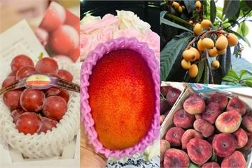 Năm loại quả đắt đỏ vẫn 'cháy hàng' tại Việt Nam