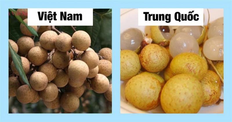 20 cach phan biet rau cu Trung Quoc va Viet Nam, nam chac de tranh mua nham-Hinh-10