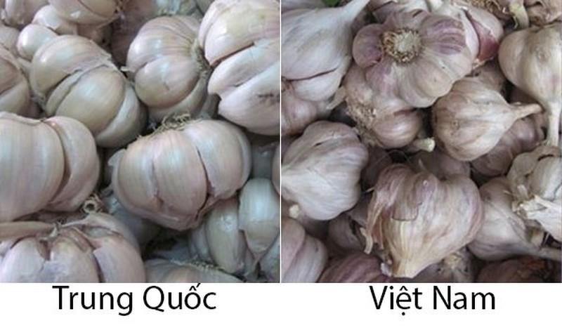 20 cach phan biet rau cu Trung Quoc va Viet Nam, nam chac de tranh mua nham-Hinh-18