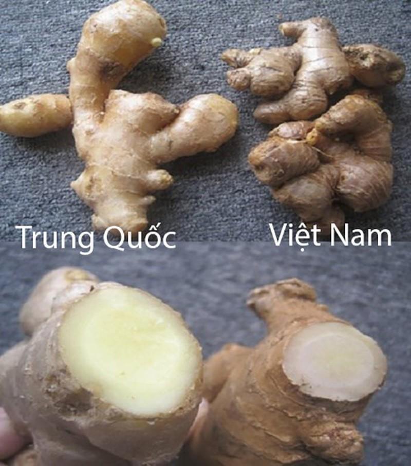20 cach phan biet rau cu Trung Quoc va Viet Nam, nam chac de tranh mua nham-Hinh-19
