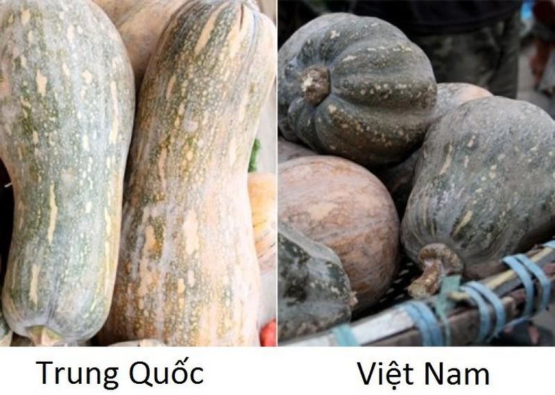 20 cach phan biet rau cu Trung Quoc va Viet Nam, nam chac de tranh mua nham-Hinh-5
