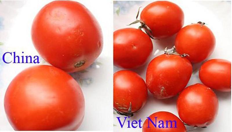 20 cach phan biet rau cu Trung Quoc va Viet Nam, nam chac de tranh mua nham-Hinh-6