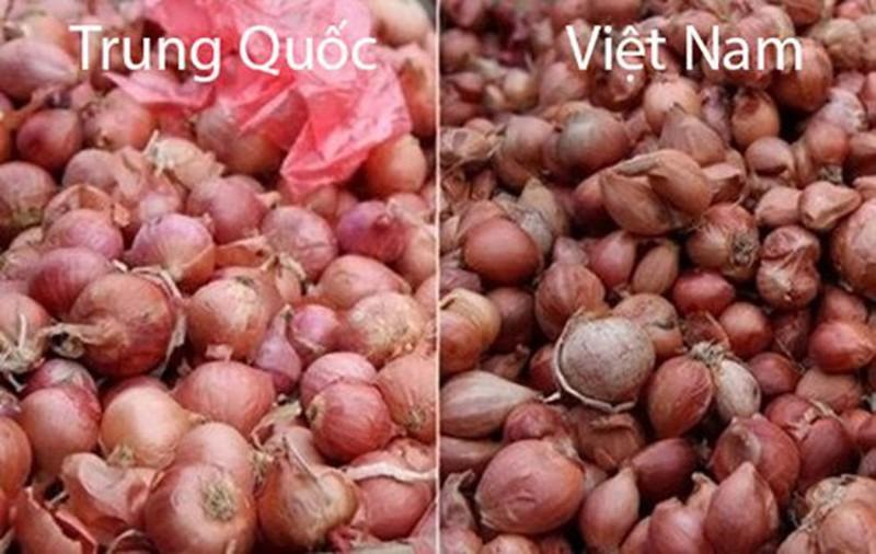 20 cach phan biet rau cu Trung Quoc va Viet Nam, nam chac de tranh mua nham-Hinh-9