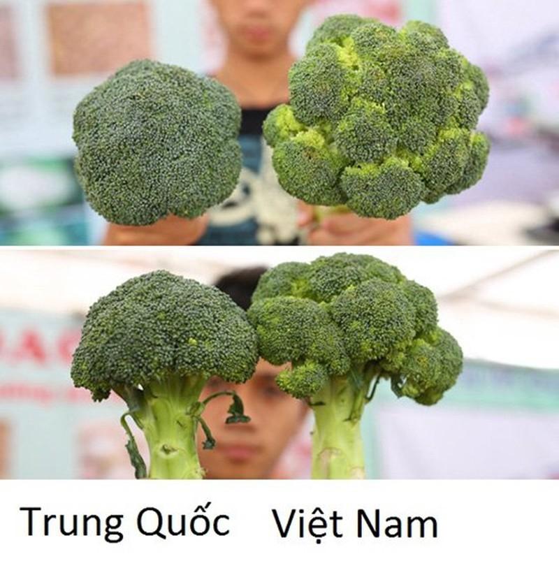 20 cach phan biet rau cu Trung Quoc va Viet Nam, nam chac de tranh mua nham