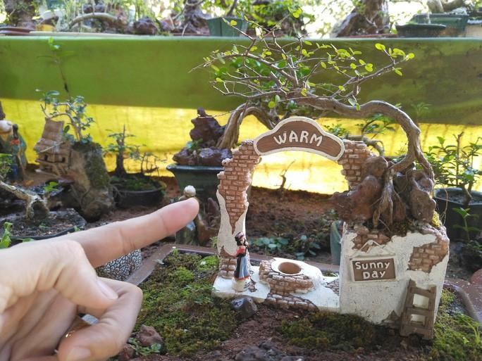 Chiem nguong 2 vuon bonsai doc dao xac lap ky luc o Viet Nam-Hinh-11