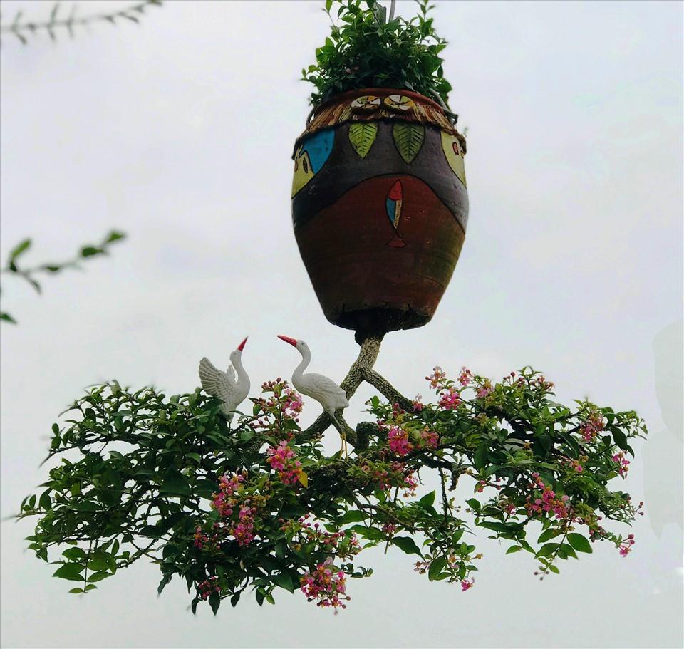 Chiem nguong 2 vuon bonsai doc dao xac lap ky luc o Viet Nam-Hinh-2