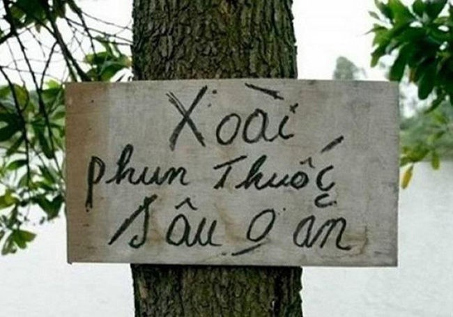 """Do khoc do cuoi voi chieu doc la chong lai nan """"xoai tac""""-Hinh-7"""