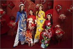 Miss Universe Vietnam beauties stun in Tet photo collection