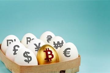 Bất chấp cảnh báo rủi ro, hàng trăm công ty đang chấp nhận thanh toán bằng bitcoin và các loại tiền điện tử