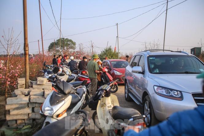 Đào bung nở, làng Nhật Tân nghẽn lối vào ngày cận Tết - ảnh 8