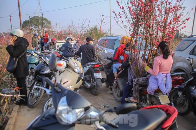 Đào bung nở, làng Nhật Tân nghẽn lối vào ngày cận Tết - ảnh 9