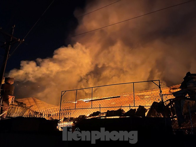 Công nhân bật khóc vì công ty gỗ rộng 5.000m2 bị lửa nhấn chìm - ảnh 4