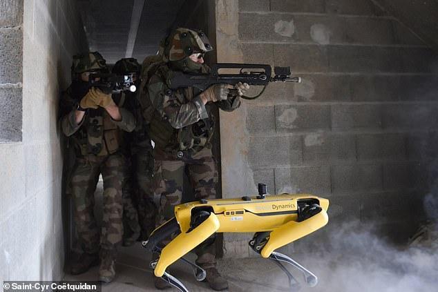 Xem chó robot trị giá 1,7 tỷ đồng của quân đội Pháp 'trổ tài' chiến đấu ảnh 1