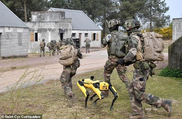 Xem chó robot trị giá 1,7 tỷ đồng của quân đội Pháp 'trổ tài' chiến đấu ảnh 2