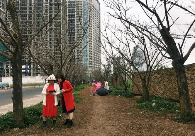 """""""Con đường Hàn Quốc"""" tại Đà Nẵng dần mất đi vẻ đẹp vốn có - ảnh 2"""
