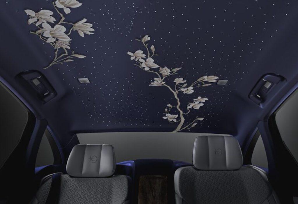 Cửa nào để xe siêu sang Trung Quốc Hongqi H9+ cạnh tranh với những Maybach hay Bentley? ảnh 8