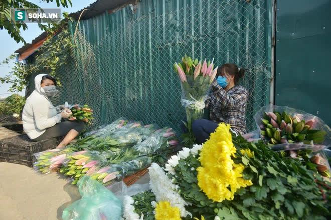 Hoa ly hàng xịn giảm giá sập sàn rẻ như rau, 7.000 đồng/cành sau Tết - Ảnh 3.