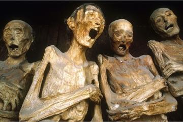 Cách người Nhật ướp xác khi vẫn… còn sống, hiệu quả lưu giữ nguyên vẹn nghìn năm