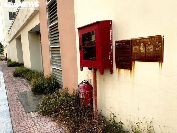 Cảnh u ám của 3.790 căn hộ tái định cư nằm chết giữa lòng TP.HCM - Ảnh 9.