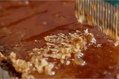 5 tuyệt chiêu giúp bạn kiểm tra mật ong hàng 'chuẩn'