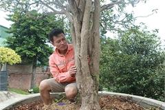 Vườn mộc hương quý hiếm nhất Việt Nam của đại gia đất Tổ
