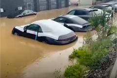 Đau lòng trước thảm cảnh dàn xe Porsche của đại lý ngập trong nước lũ
