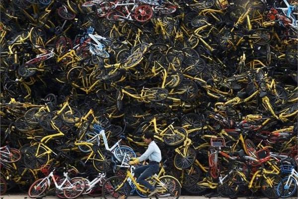 """Dân Trung Quốc sợ hãi tới mất ngủ vì xe đạp """"kêu cứu thảm thiết"""""""