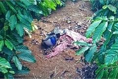 Người phụ nữ bị sát hại, chôn trong rẫy cà phê ở Lâm Đồng
