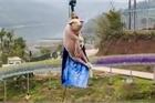 Công viên TQ treo lợn sống lơ lửng ở độ cao 70m gây tranh cãi