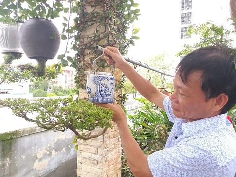 "ngam dan bonsai ""moc nguoc"" cuc doc la cua lao gan xu quang hinh anh 14"