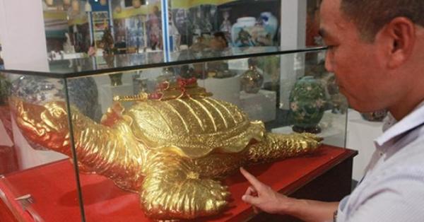Cận cảnh cụ rùa vàng 'siêu to khổng lồ' giá trăm triệu đồng