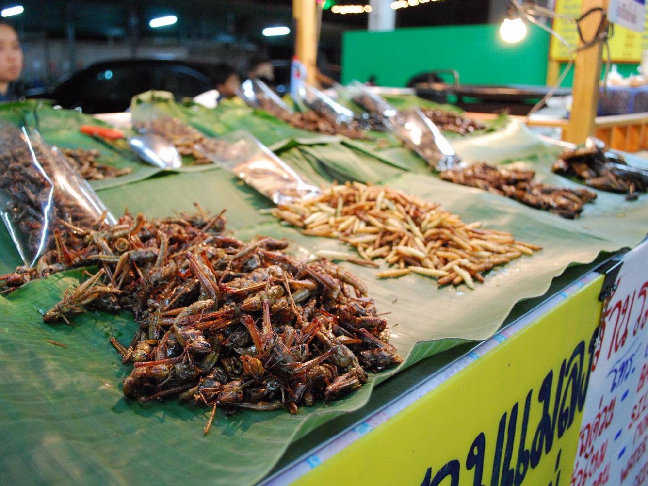 5 dac san di noi tieng thai lan: khong du gan do dam thuong thuc hinh anh 11