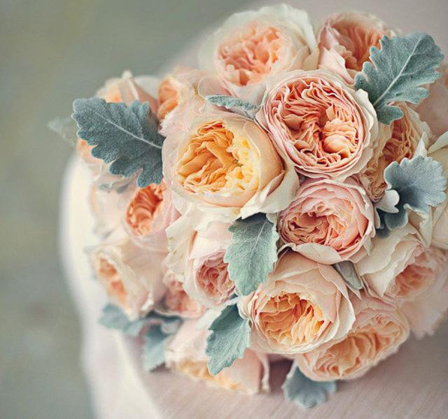 nhung loai hoa