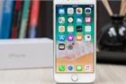 iPhone SE 2 sẽ sử dụng màn hình LCD của nhà sản xuất Nhật Bản